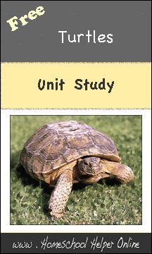 Homeschool Helper Online's Turtles Unit Study