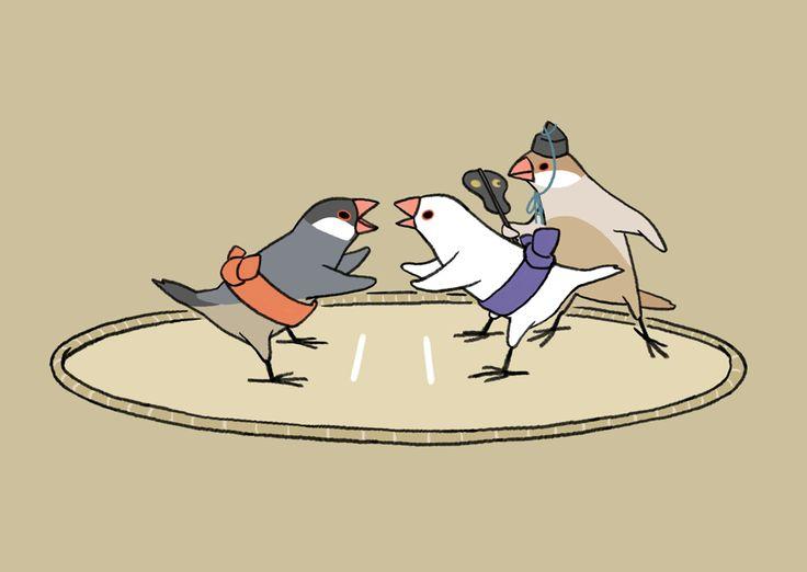 のこったのこったー! 文鳥のケンカはいつもこんなかんじ。 - Works of Tsuji Saori