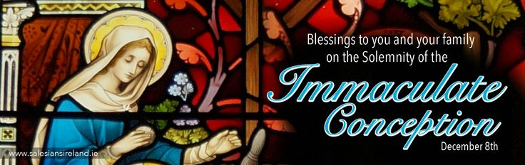 Blessings to you and your family on the Solemnity of the Immaculate Conception. (December 8th)