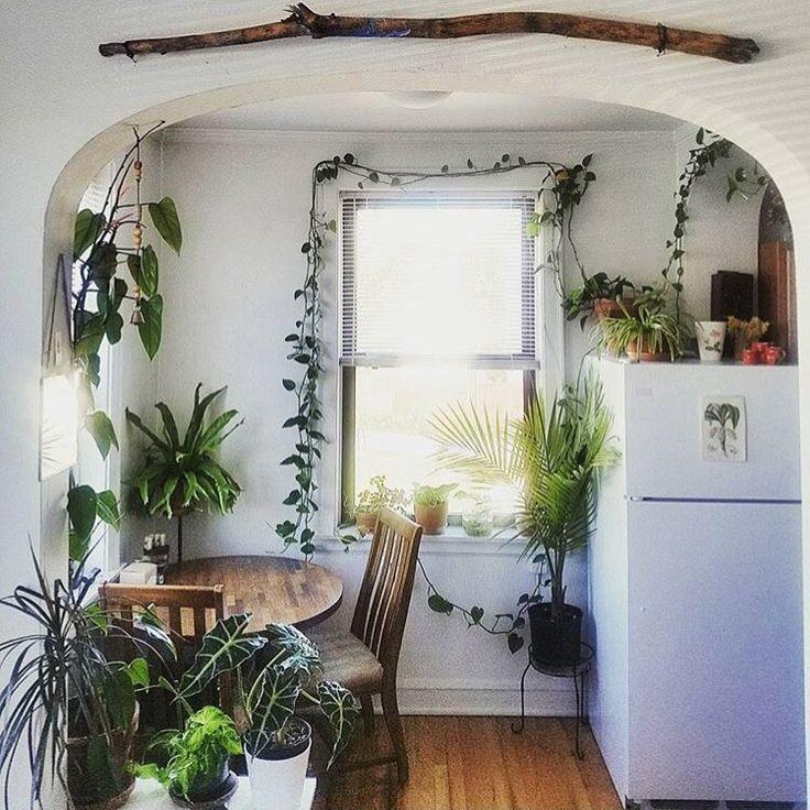 17 Best Ideas About Apartment Kitchen Decorating On: 17 Best Ideas About Bohemian Kitchen Decor On Pinterest
