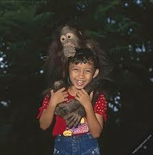 Orang utan's time. kiddo with orang utan.