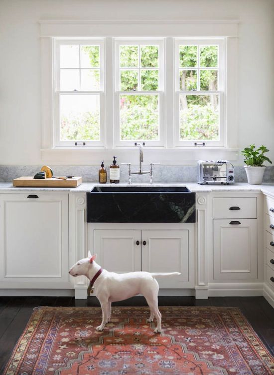 La Kitchen With Cute Dog Contrast Black Marble Sink Colorful Rug Homedecor