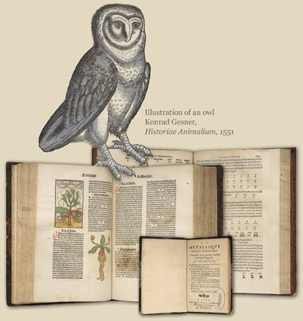 U.S. National Library of Medicine: Harry Potter's World: Renaissance, Science, Magic and Medicine