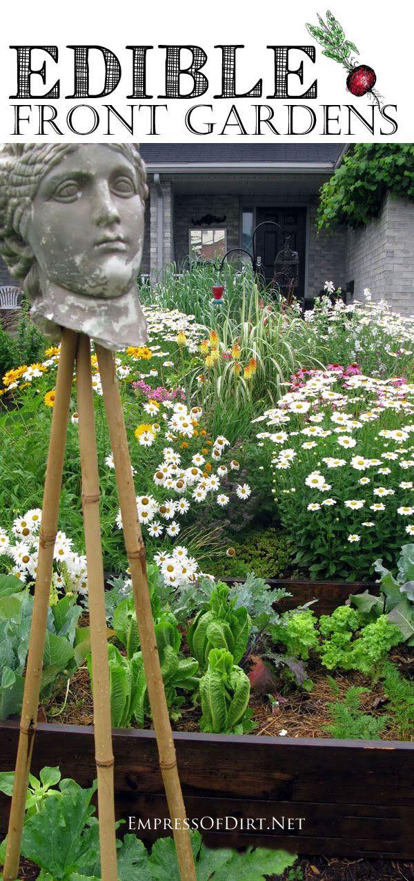 18 Best Images About Garden Edibles On Pinterest 640 x 480
