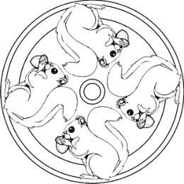 eichhörnchen mandalas | Ausmalbilder für kinder