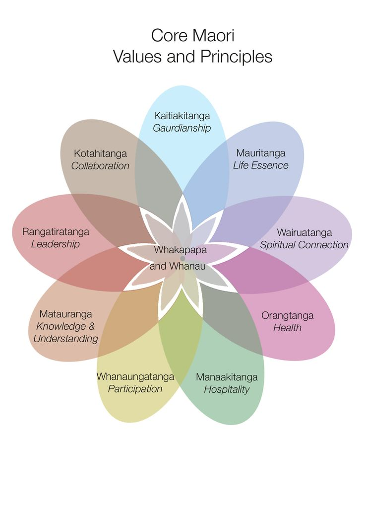 Figure 4: Core Maori Principles and Values