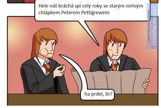 Proč jsou dvojčata Weasleyova nejtupějšími postavami z Harryho Pottera? - 3