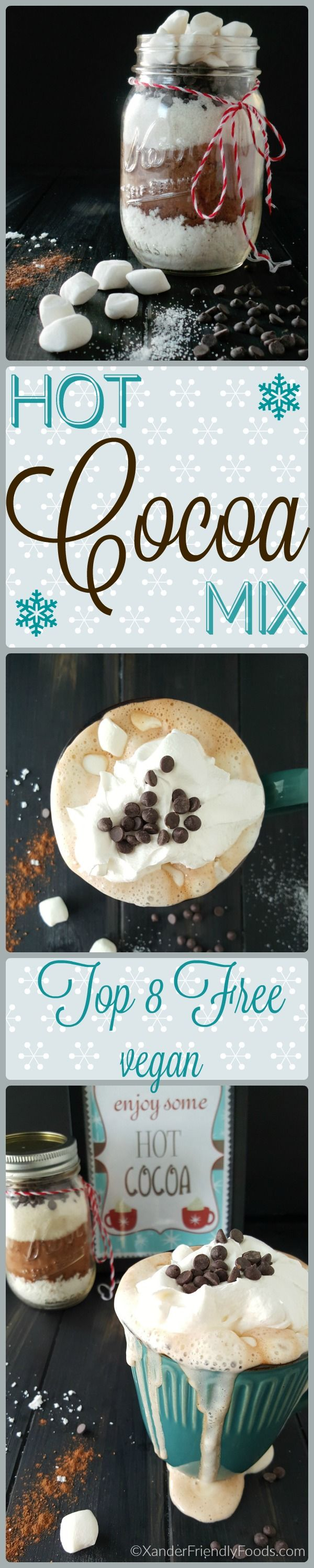 Deliciously Vegan, Hot Cocoa Mix (GF,NF too) to keep you warm this winter. Recipe for 1 person or make the mix which serves 10.
