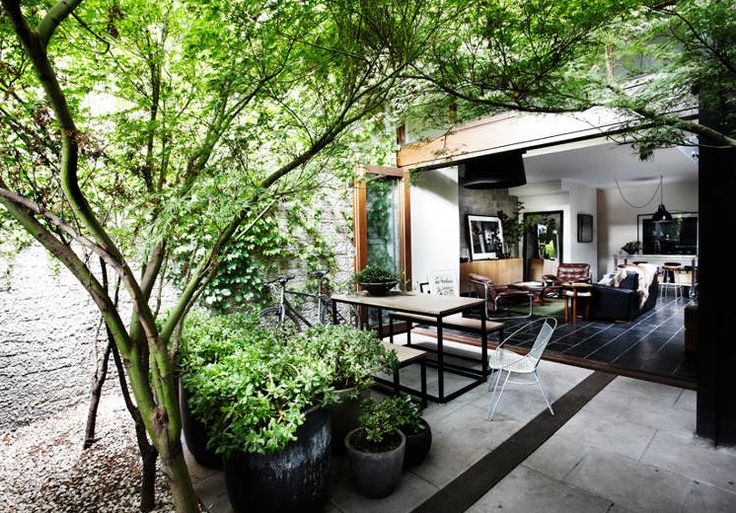 41 Best Atriums Amp Courtyards For Modern Homes Images On