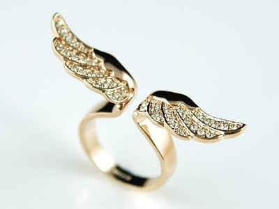 Angel wings....pretty! :)