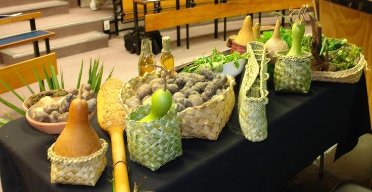 Collection of Traditinal Maori Foods - Hue, Kumara, Taewa, Tutaikuri, Puha, Pikopiko, Watercress, Taro, Kokihi, Kamokamo, Karino, Tawa Oil, Karamu Oil, Peruperu to make up the display