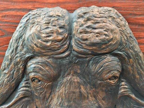 """Buffalo Head Sculpture Wall Hanging.   Hand Crafted. Wooden Frame: 1330x1000 Buffalo scale 1:1 40"""" Bull. M1 sculpture casting agent and stained wood. www.Goodieshub.com"""