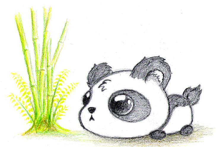 Chibi Baby Panda Drawing - Tera Wallpaper