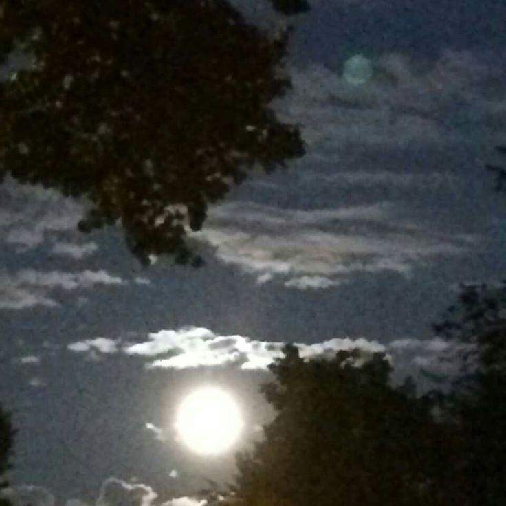 Volle maan      foto Henk de Nijs