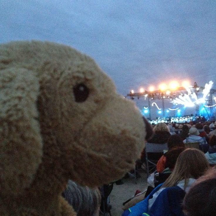 Doudou adore les concerts du Violon sur le sable à Royan en Juillet