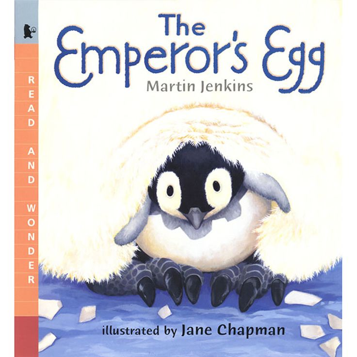 Great book explaining how the mother and father take turns taking care of the egg.  I see there are many activities to go along with this.