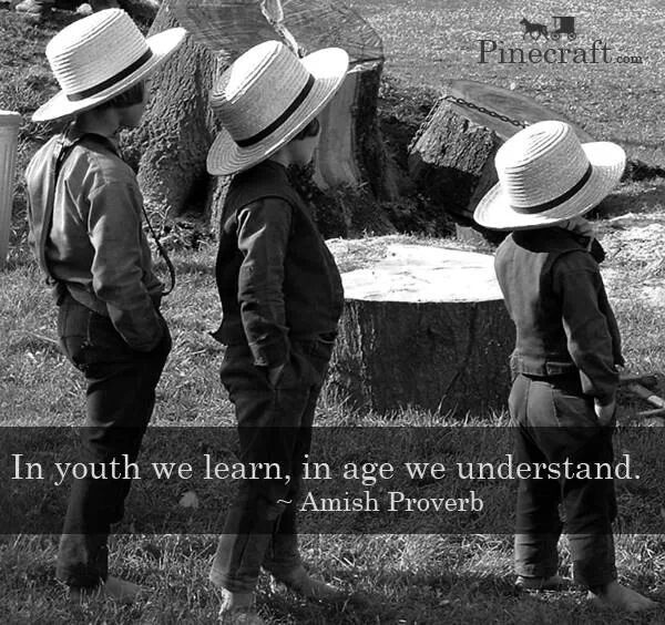 In youth we learn, in age we understand.