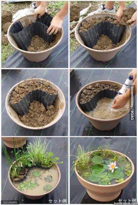 Garden pond in a pots | World In Green