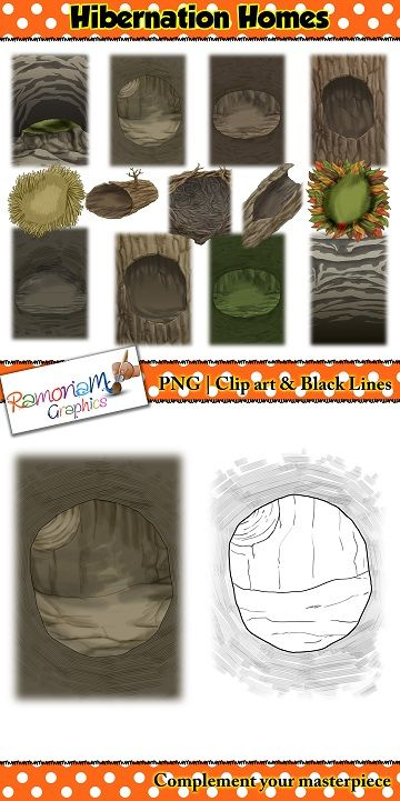 This Hibernating Animals Clip art set consists of realistic images of the typical places animals like to Hibernate.