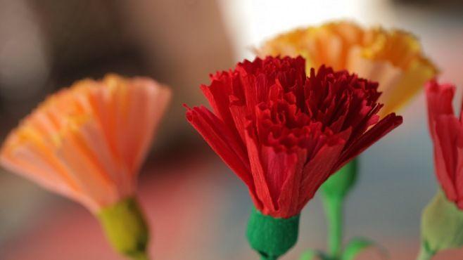 Kağıt Sanatı - Karanfil Buketi Tasarımı - Kağıt Sanatı - teknikleri, örnekleri ve ipuçlarını videolu anlatımı. Kağıttan hediyelik ve özel günler için karanfil buketi yapımı (Crepe Paper Carnations Video)