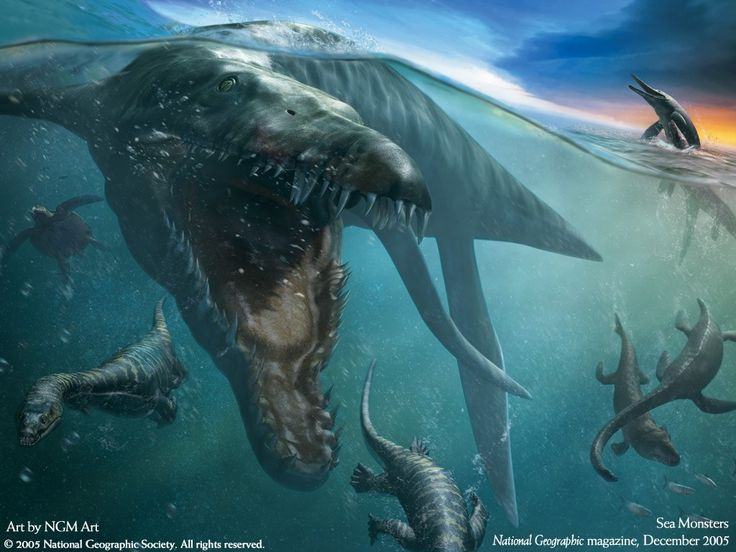 Fantasy Wallpaper: Sea Monsters
