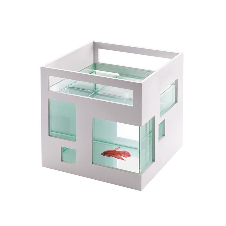 Award-winning contemporary design is now available to your pet with this angular fish tank, perfect for small spaces like bookshelves and desks. The fish tank can also be customized: the white outer sh...  Find the Fish Apartment, as seen in the The Pet Boutique Collection at http://dotandbo.com/collections/holiday-boutiques-the-pet-boutique?utm_source=pinterest&utm_medium=organic&db_sku=UMB0022