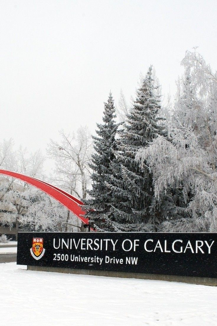 University Of Calgary Students Invent 'WindChill' Fridge That Requires No Electricity