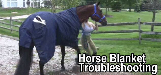 Horse Blanket Troubleshooting How To Fix Your