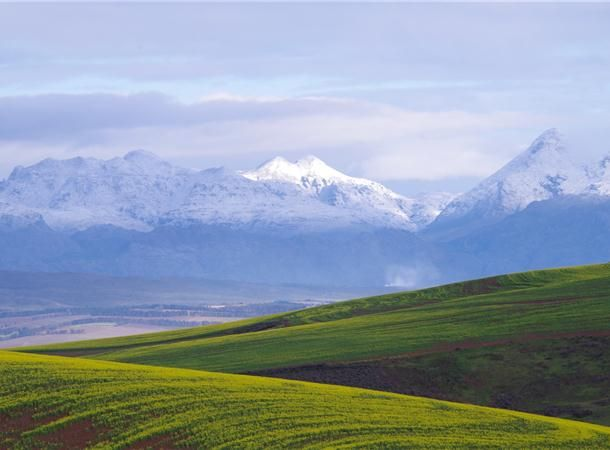 Beautiful pictures of snow on the mountains near Villiersdorp in this weeks Hermanus Times.