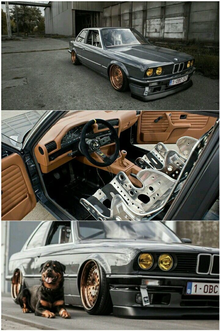 BMW E30 Coupe with an insane interior  Plus doggy