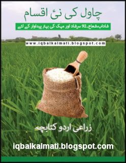 New Rice Crop Varieties In Pakistan Urdu Book is available to read online and download http://iqbalkalmati.blogspot.com/2016/05/new-rice-crop-varieties-in-pakistan.html