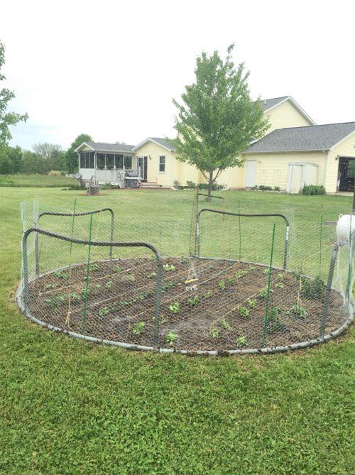 Garden Design With Trampoline best 25+ old trampoline ideas on pinterest | recycled trampoline