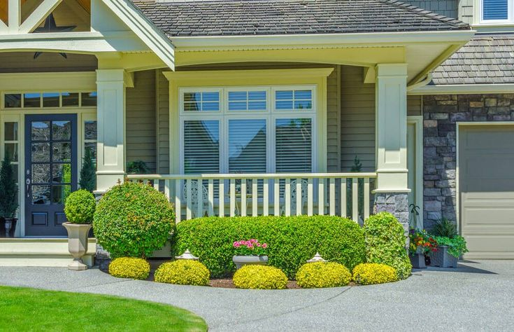 die helle gelbe farbe des goldenen rosenkranz str ucher. Black Bedroom Furniture Sets. Home Design Ideas