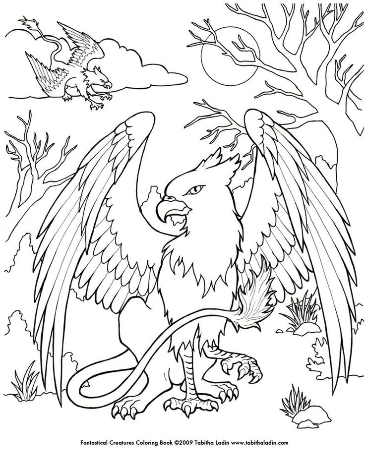a page from my  quot fantastical creatures coloring book quot  hand drawn with ink on paper feel free to Adult Coloring Books  Coloring Book Credits