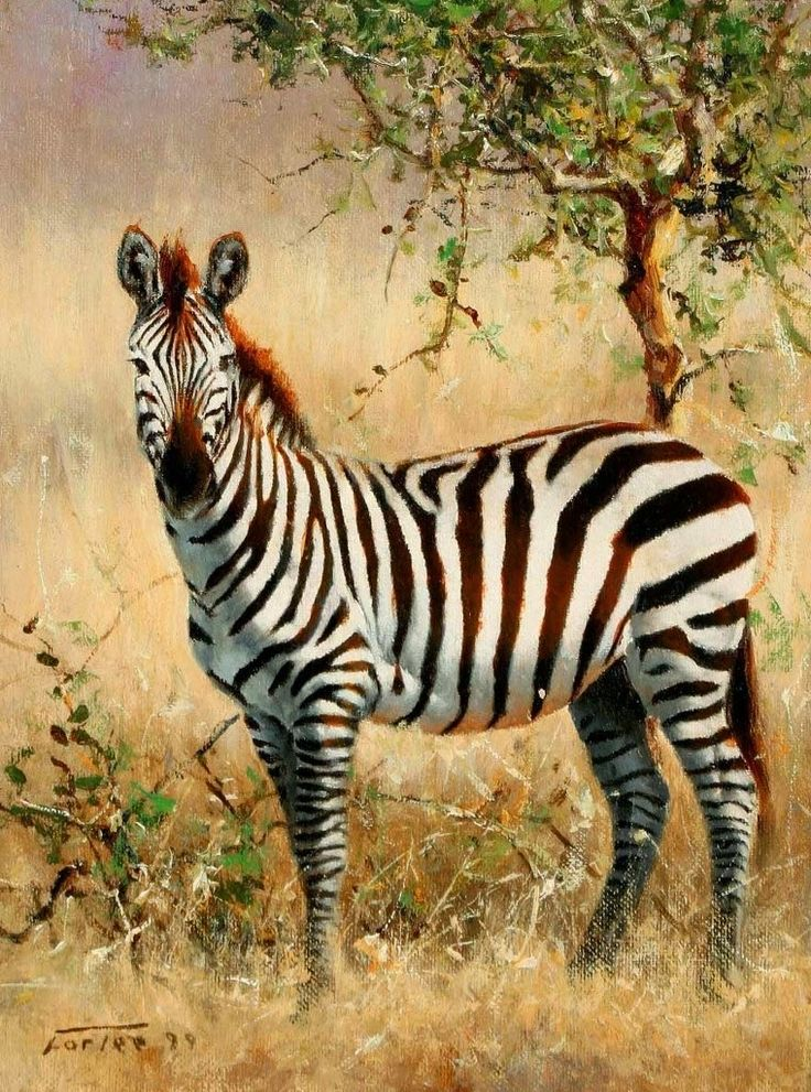dibujos-de-animales-africanos-al-oleo