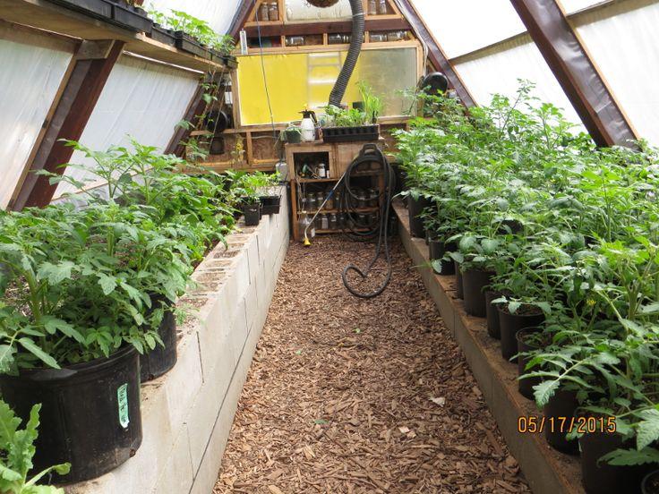 best 25+ underground greenhouse ideas only on pinterest