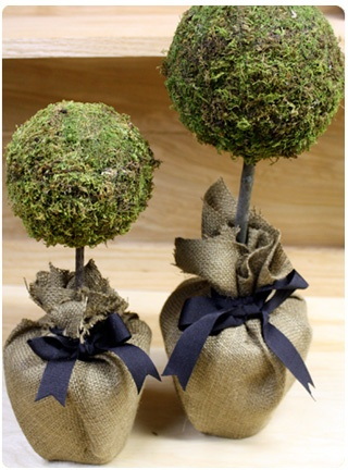 DYI Moss topiary - Instead of burlap bag with bow try a different container