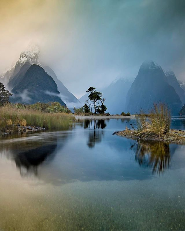 Moody Piopiotahi, Milford Sound, New Zealand --- from brentpurcell on Instagram