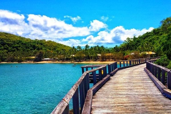 The island's walking and hiking opportunities are extensive; there's around 13 kilometres of bushwalking track on offer here, and during the various leisurely strolls native wildlife such as kangaroos and goannas can be encountered. Long Island - Which Whitsundays Island is Best For You? #Whitsundays #Australia #LongIsland #Queensland #Island #ExperienceOzNZ #WhatWillYouDo
