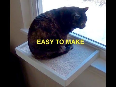 Best 25 Cat Window Perch Ideas On Pinterest Cat Window