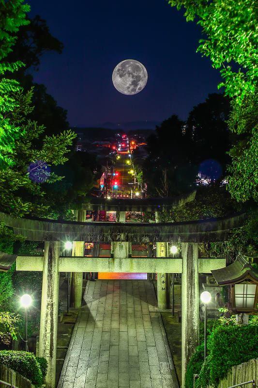 神社、福岡/Fukuoka, Japan