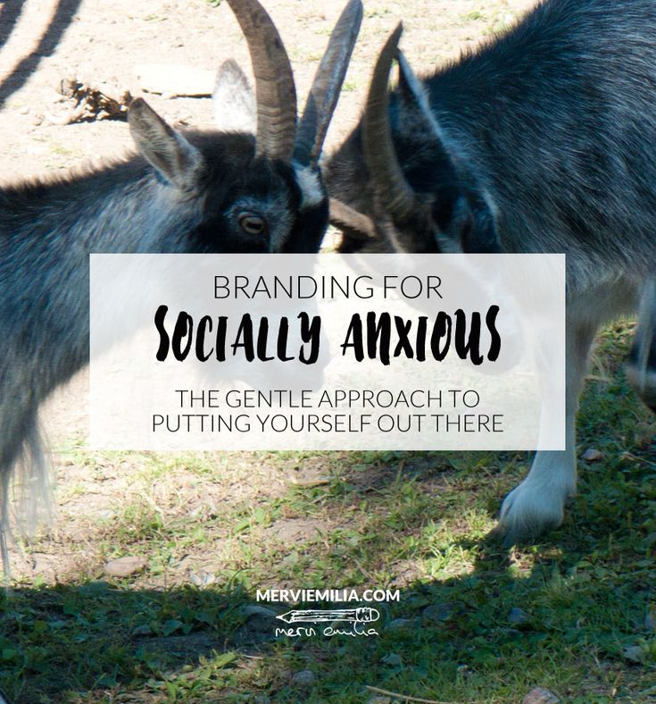 If you suffer from social anxiety, branding and other marketing can feel exhausting and scary. You can do it, with a gentle approach. Read more in this article.