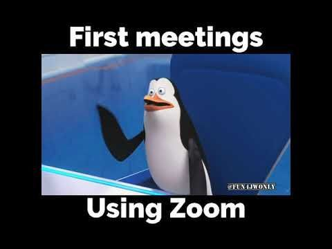 Zoom Meetings Funny Funny Zoom Meeting Memes De Clase Memes Divertidos Jw Divertida