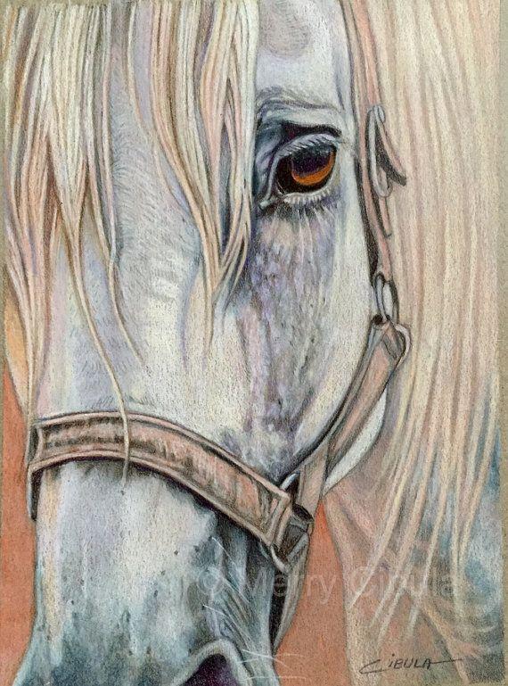 An original equine colored pencil drawing by MerryCibulaStudios