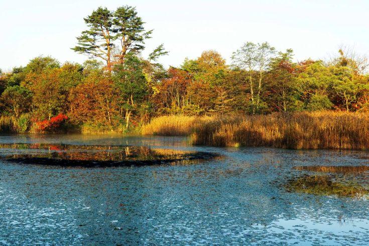 福島県耶麻郡北塩原村にある沼。探勝路が整備されており、磐梯山の展望スポットである中瀬沼展望台まで歩くことができる。
