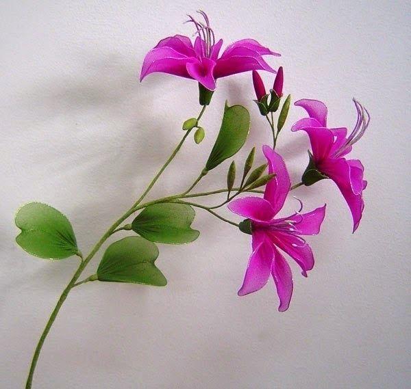 FLOWERS OF NYLON TIGHTS