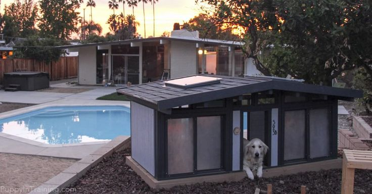 Raven's custom dog house get the sunset over the human's Eichler home.