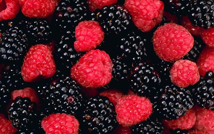 blackberry fruit - Google Search