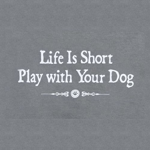 Inspirational Quotes About Play: Life Is Short. Play With Your Dog, Cat, And Pets