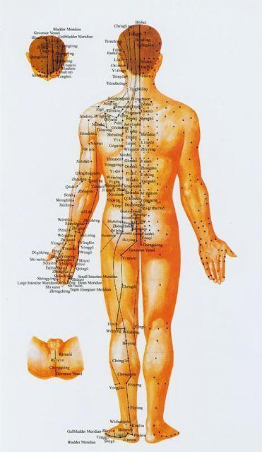 meridiánok akupunktúra pontok hátulról